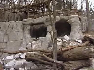 Nový medvědinec jihlavské zoo