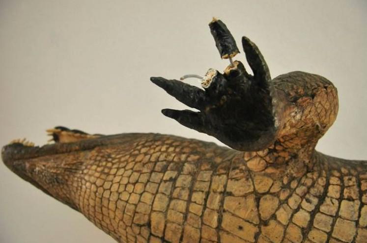 Vycpaný krokodýl