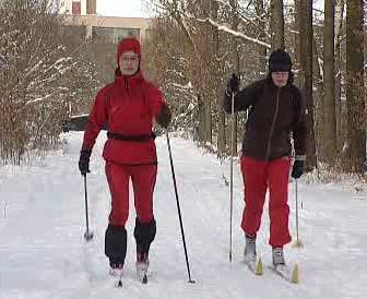 Běžkaři ve stopě