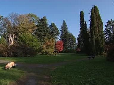 Chářovský park