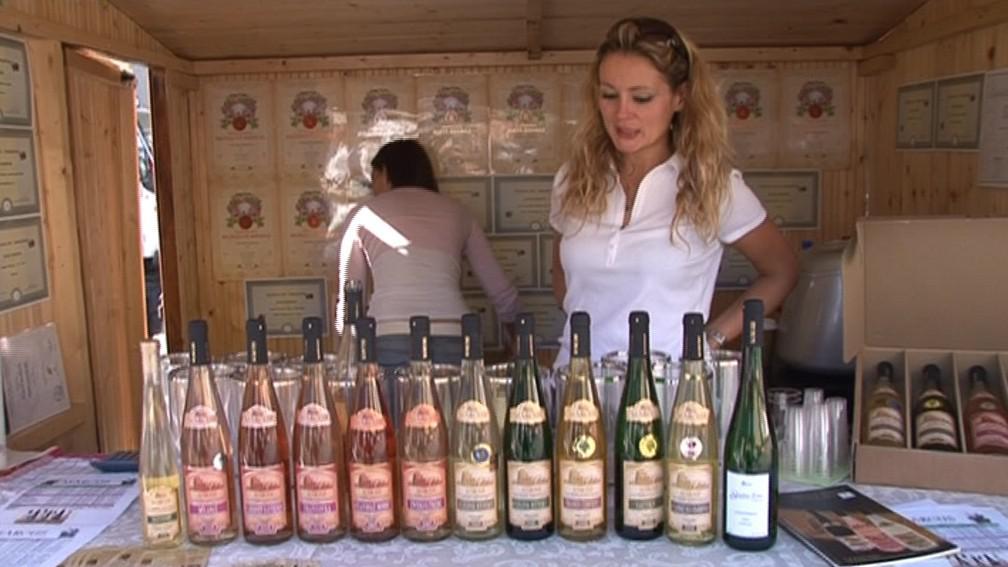 Slavnosti vína v Brně
