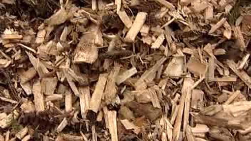 Dřevěná štěpka