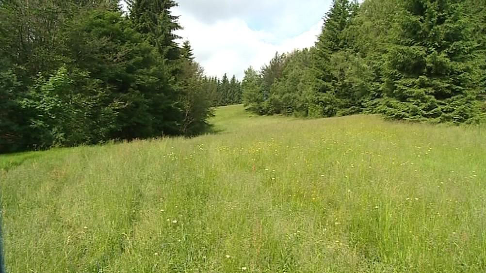 Lesy a louky, o které šedesátníka připravili podvodníci