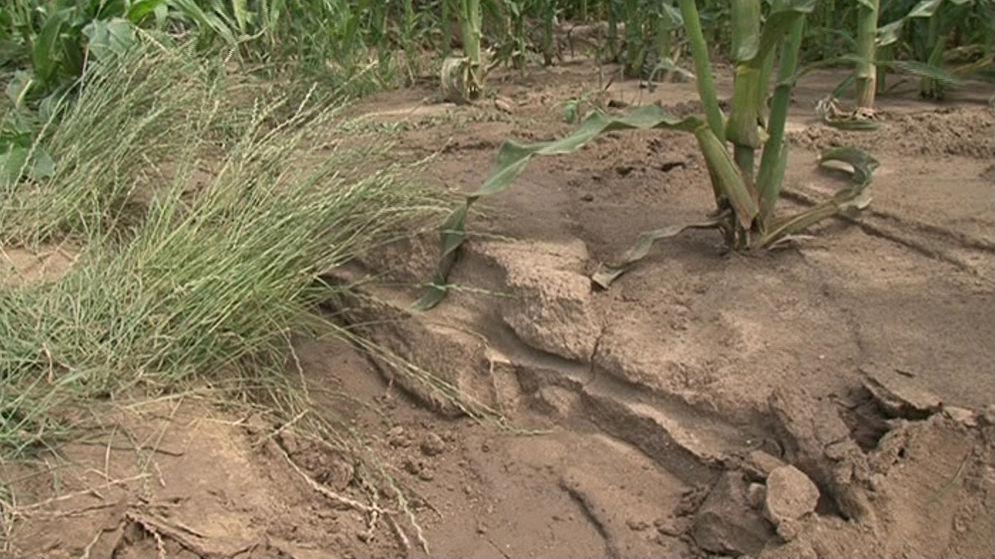 Eroze půdy