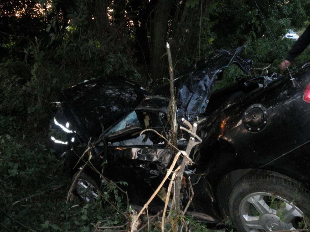 Po střetu osobního auta se srnou zemřel mladý muž
