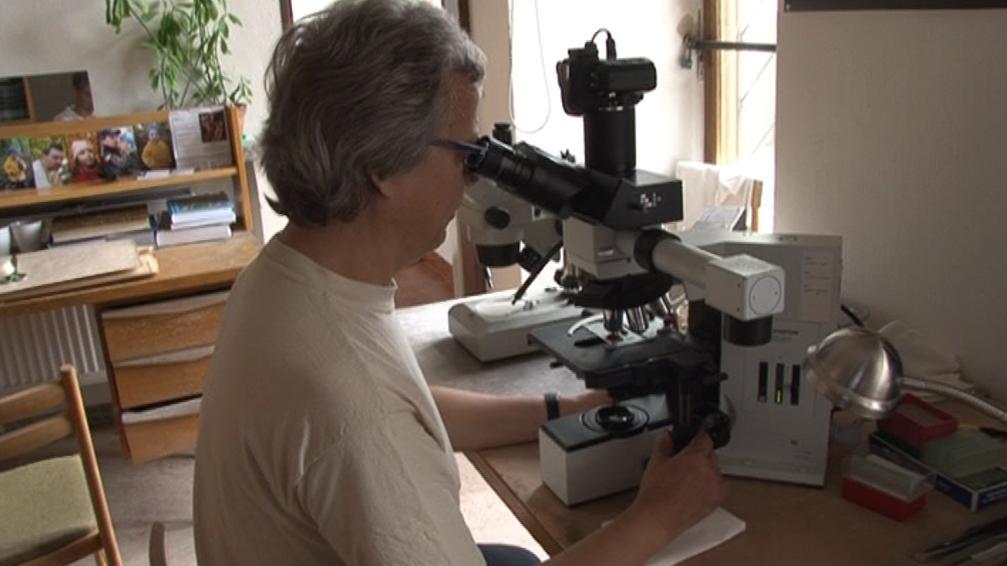 Mykolog Vladimír Antonín při práci v houbařské poradně