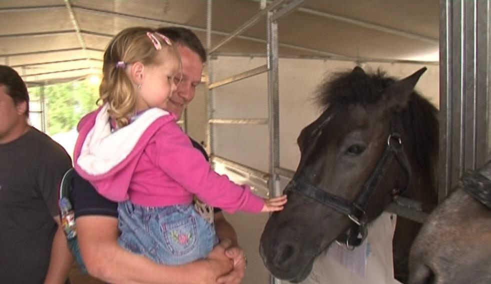 Výstava zvířat láká i děti