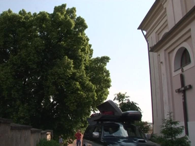 Ošetření lípy v Letonicích