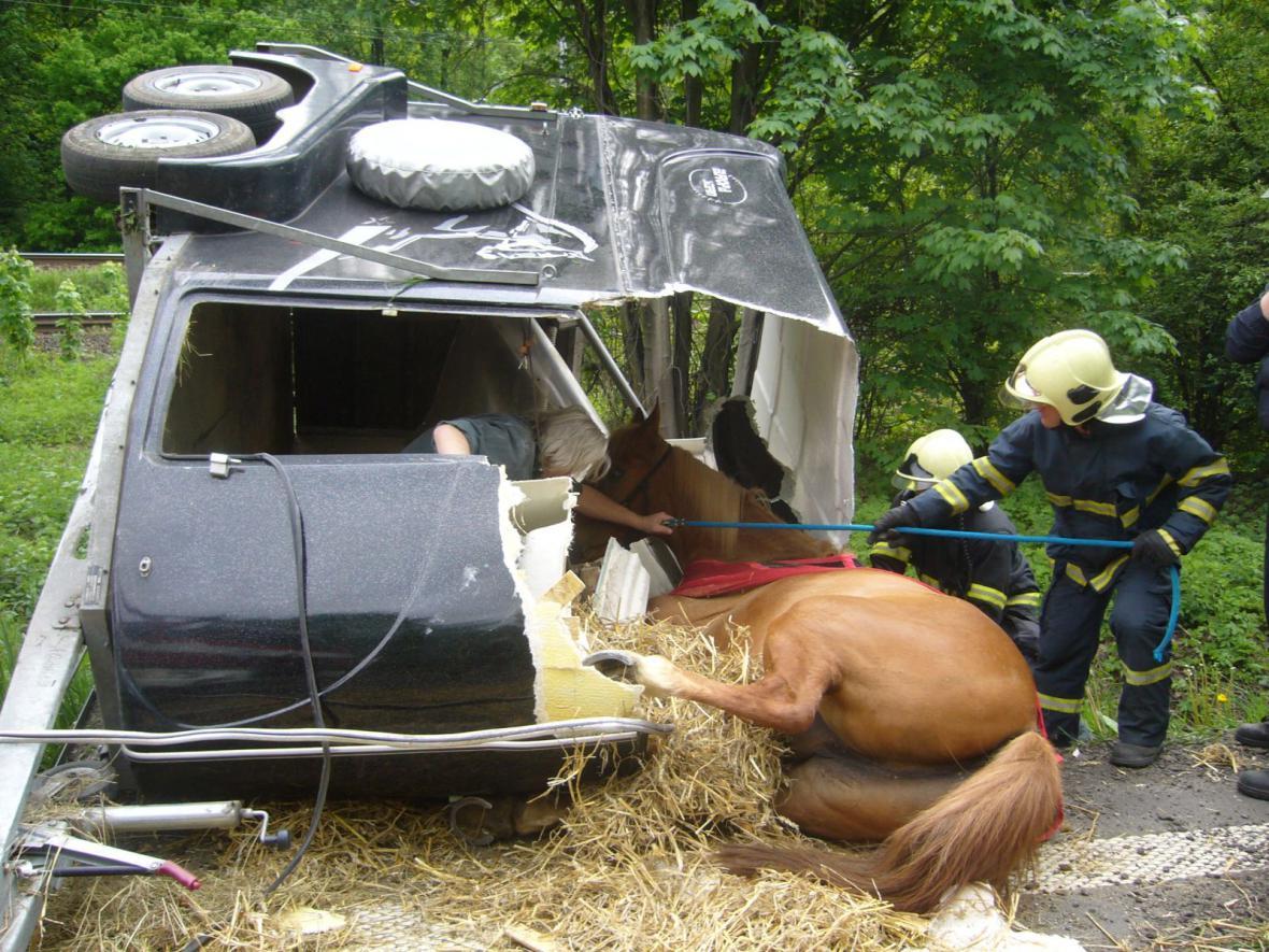 Hasiči při záchraně koně