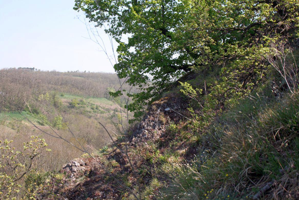 Národní přírodní rezervace Krumlovsko - rokytenské slepence