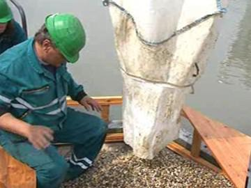 Budování ostrůvků pro ptáky