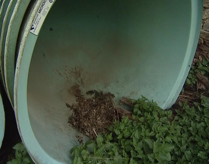 Nevyužité čističky zarůstají plevelem