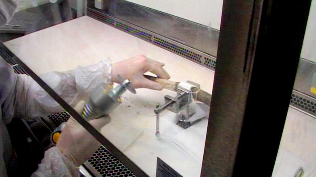 Experti se snaží z kostí získat profil DNA