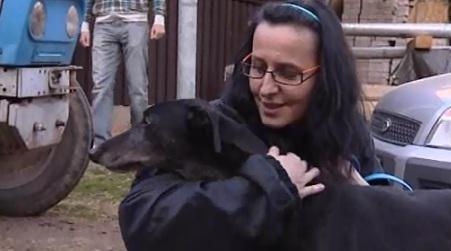 Noví majitelé přivítali týrané a zanedbávané greyhoundy s láskou