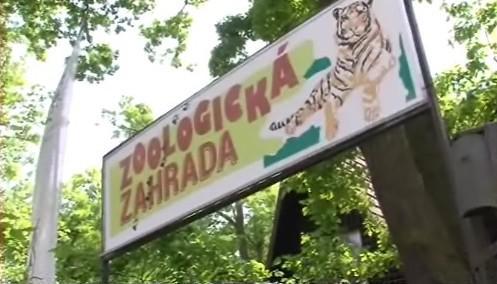 Hodonínská zoologická zahrada