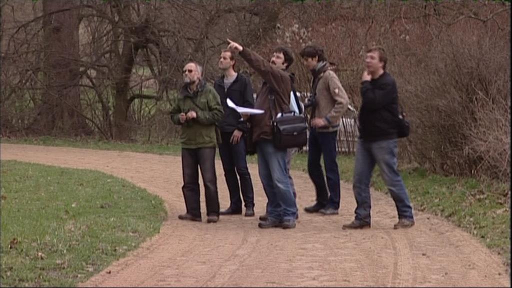 Odborníci se vydali zkoumat stromy v parku