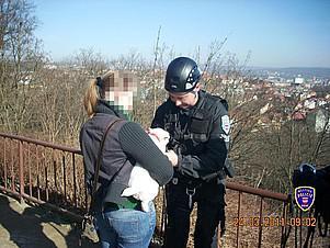 Policisté předali fenku šťastné majitelce