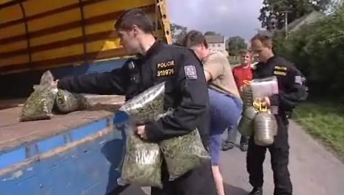 Policisté zabavili v pěstírně Dušana Dvořáka konopí o hmotnosti 300 kg