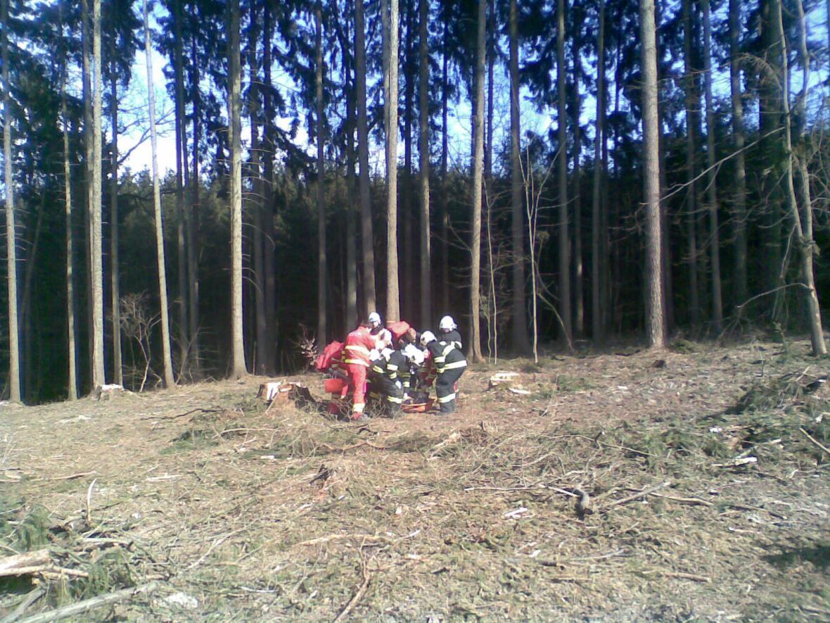 Stav lesního dělníka, kterého zavalil strom, je velmi vážný