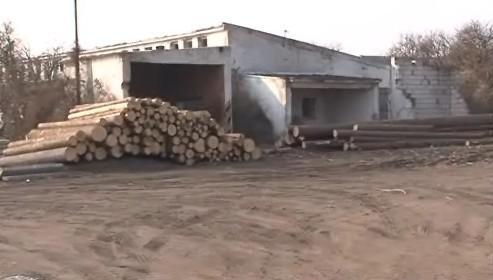 Mezisklad dřeva v šatovském zemědělském družstvu
