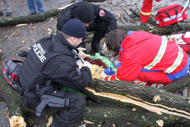Padající strom zranil i děti