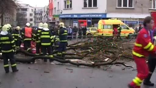 Loňský tragický pád stromu ve Zlíně
