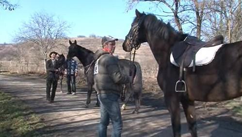 Býčka hledá i pět jezdců na koních