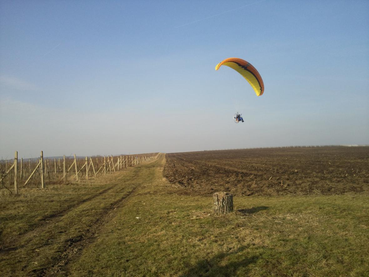 Při hledání zatoulaného býčka pomáhá i paraglidista