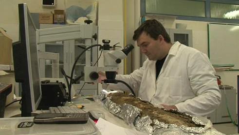 Zkoumání nálezů v laboratoři