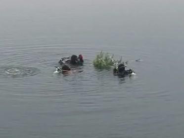 Vánoční stromeček umístili potápěči pod hladinu Vranovské přehrady