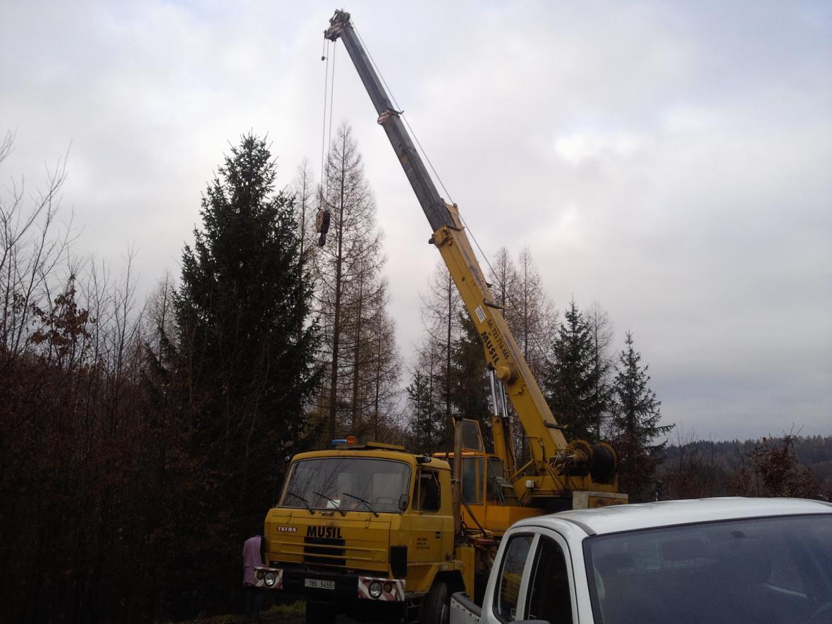 Lesníci se chystají pokácet smrk, který ozdobí náměstí Svobody v Brně