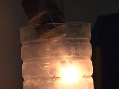 Zářivka se rozsvítí po styku s dusíkem i bez skleněné baňky