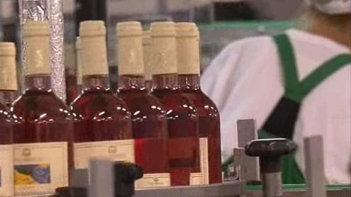 Lahvování Svatomartinského vína