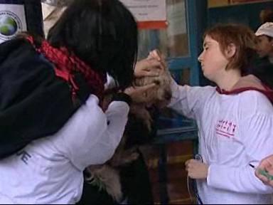 Očkování pejska Jimmiho