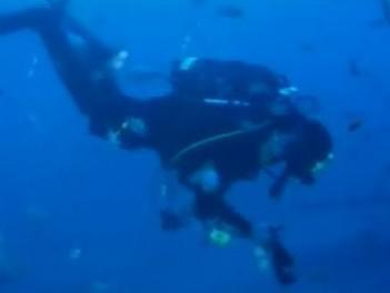 Potápěči-vinaři ukládají láhev sektu na dno moře