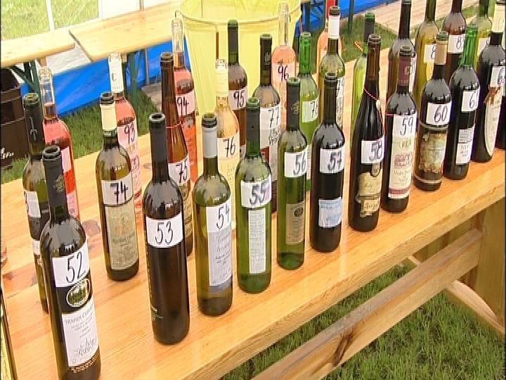 Vzorky vín v Polešovích