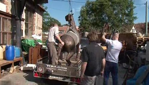 Převoz Sochy koně do Kovalovic