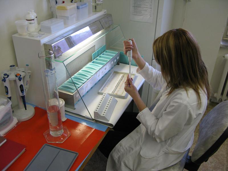 Vědci testují metody, jak odhalit přídavky v masných výrobcích