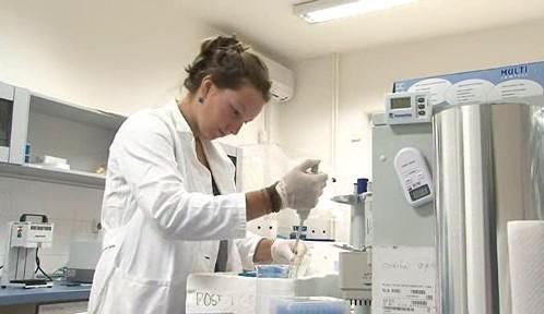 Brněnští vědci analyzují vzorky DNA zvířat