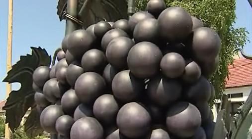 Hustopečský hrozen