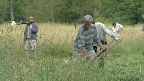 Dobrovolníci se pustili do kosení luk v Bílých Karpatech