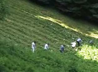Kosení luk Bílých Karpat