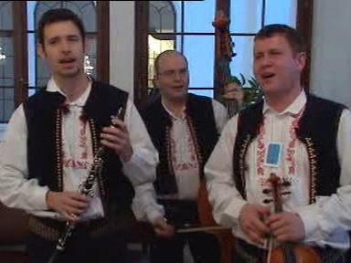 Folklórní muzikanti