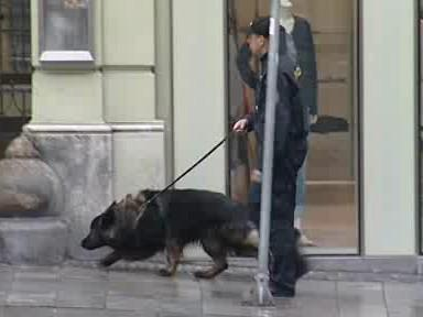 Nejprve podezřelý nález policisté zkontrolovali spolu se speciálně vycvičeným psem na odhalování výbušnin