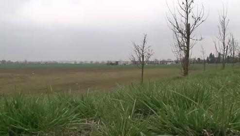 pole , kde má začít výstavba domů