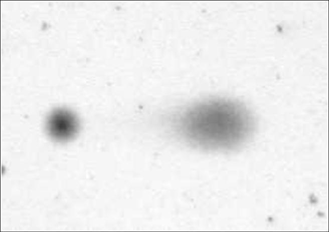 Zdravá a poškozená molekula spermie