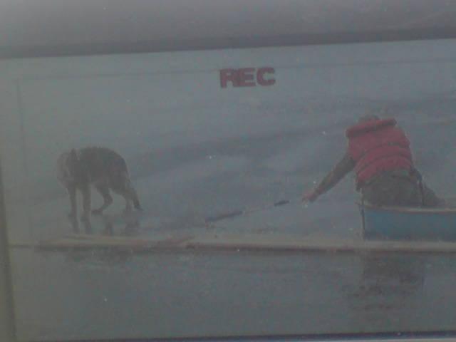 Lidé zachraňují psa, který uvízl uprostřed přehrady