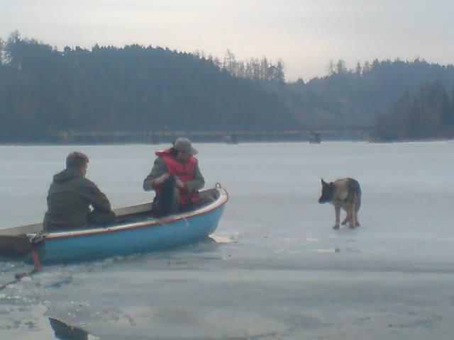 Zachránci se už dostali do těsné blízkosti psa