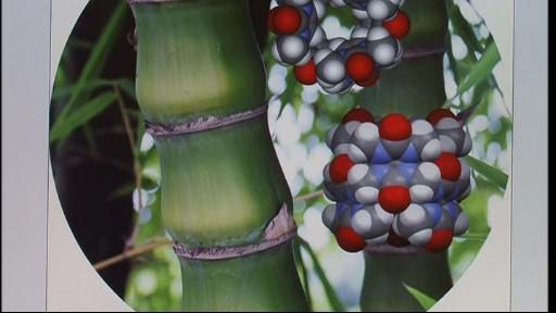 Nová sloučenina pomůže lékařům dopravovat léky v těle pacienta
