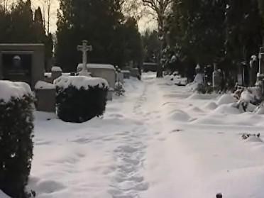 Ústřední hřbitov